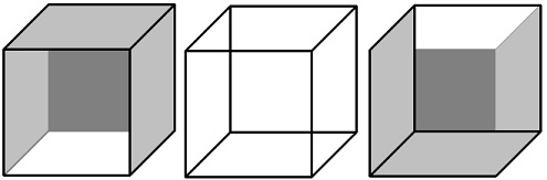 what are visual illusions
